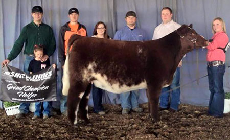 Allison_Dragstrem_Great Lakes Showdown Grand Champion Heifer