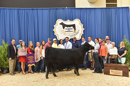 Cheyanne_Jones 2016 NJAS Grand Champion Bred_Owned Heifer_ Champ Senior Division