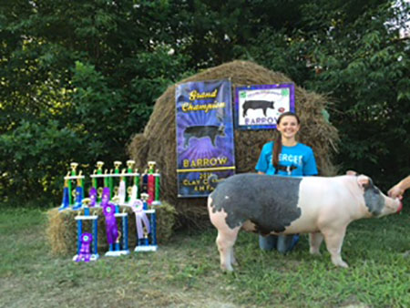 Lexus_Mercer_2015 Grand Champion Barrow