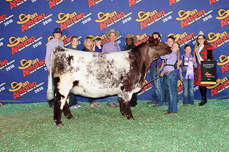 Lillie_Skiles_Champion Shorthorn Heifer SA