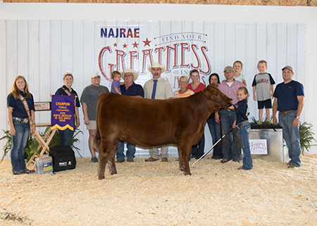 Grand Champion Red Angus Female Avery McMurphy_NAJRAE