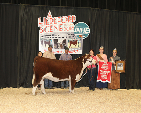 Lauren Bilderback OK Junior National Hereford Expo Division IV Polled Female Champion