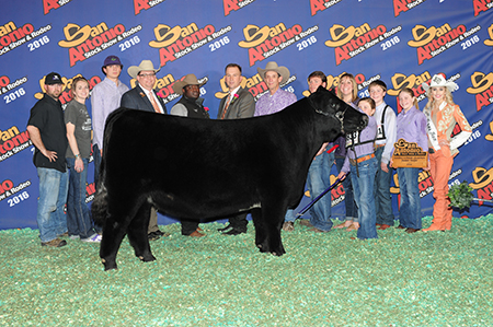 Lillie Skiles Reserve Champion Breeding Heifer San Antonio Stock Show