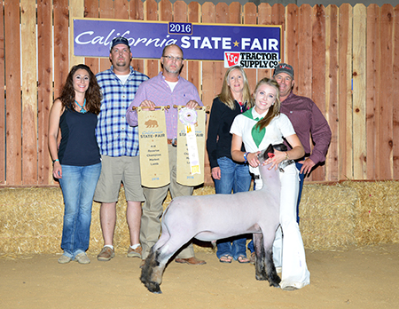Sydney Edwards Reserve Supreme Champion Market Lamb 2016 California State Fair
