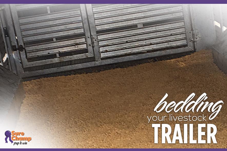 beddingtrailer-featured-dec2016