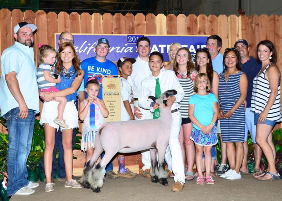 16-champion-wether-dam-cali-state-fair-owen-clark
