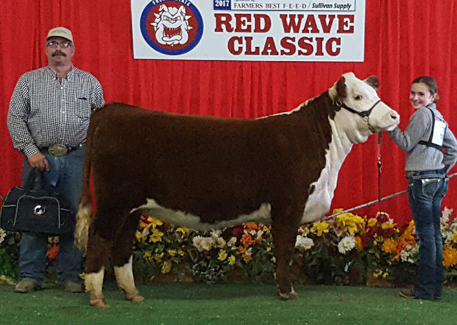 17-res-champion-hereford-red-wave-classic-katilin-dores
