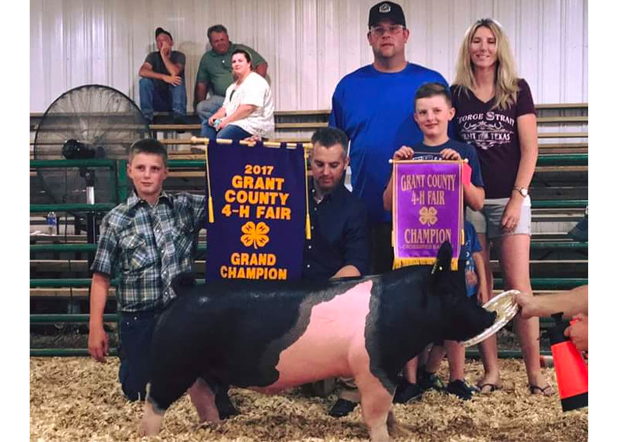 OVERALL GRAND CHAMPION BARROW2017 Grant County Indiana 4-H FairShown by Brant Solms
