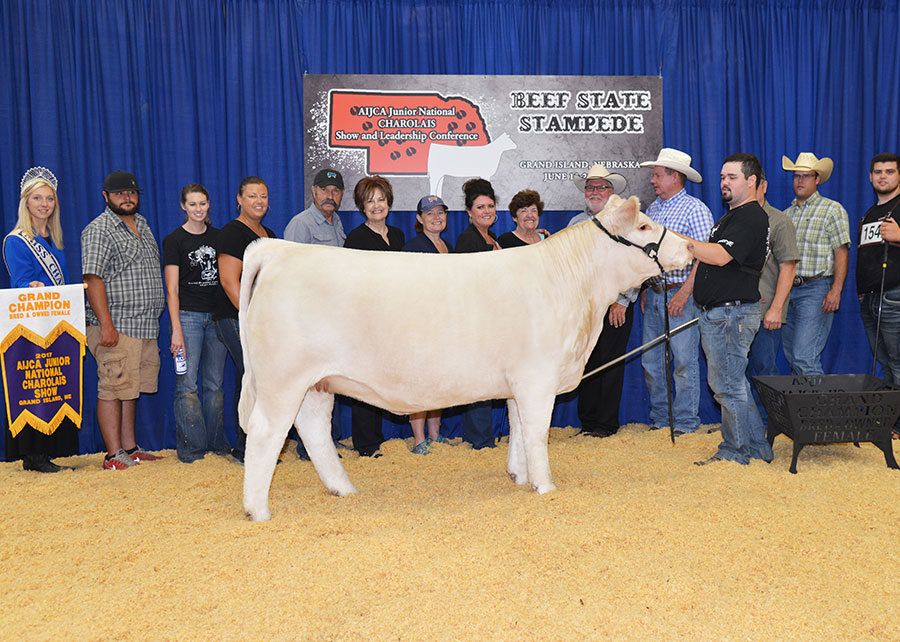 2017 Charolais Junior National Grand Champion Bred and Owned Female