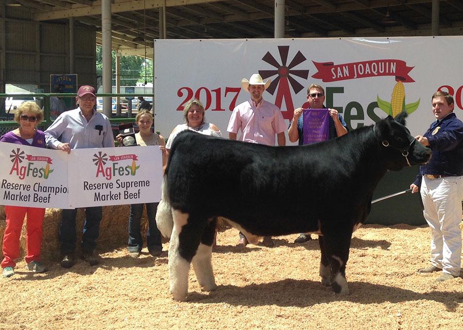 Reserve Supreme Champion Market Steer