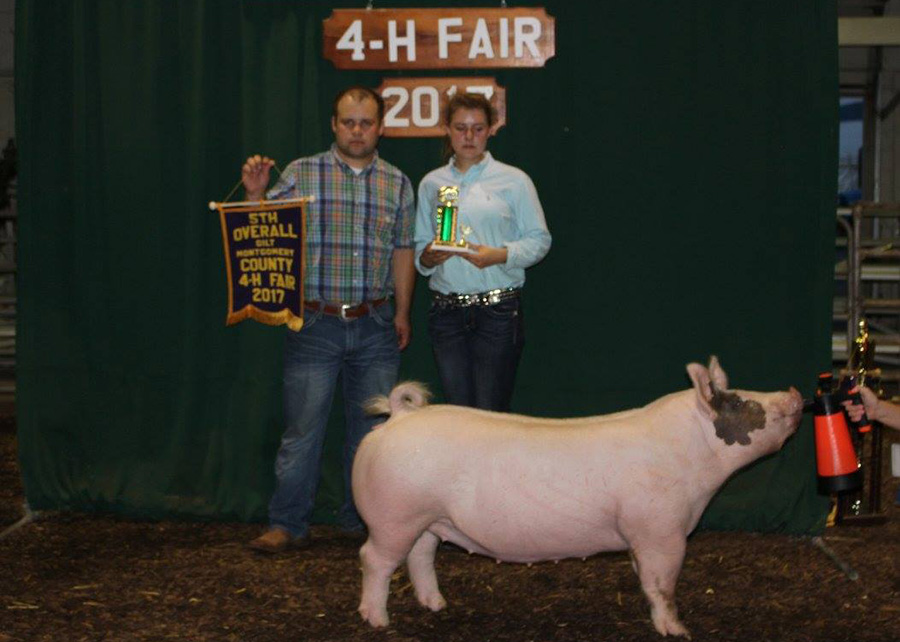 17-5th-overall-gilt-montgomery-county-fair-layla-bennett