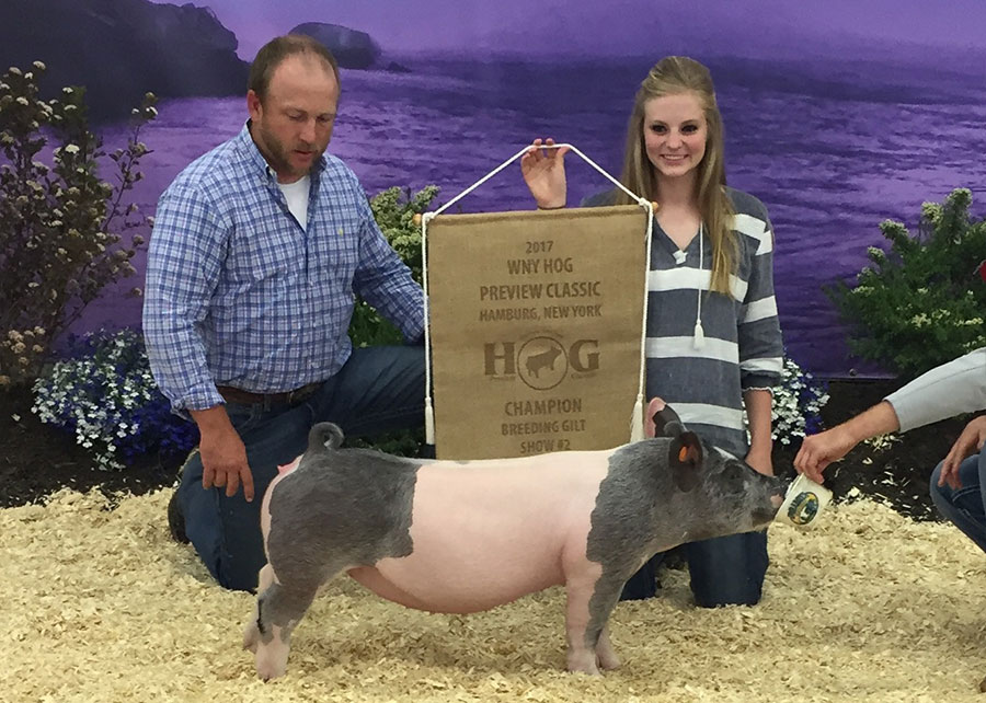 17-Grand-Champion-Overall-Breeding-Gilt-WNY-Hog-Lamb-Preview-Classic-Abby-Hemphill