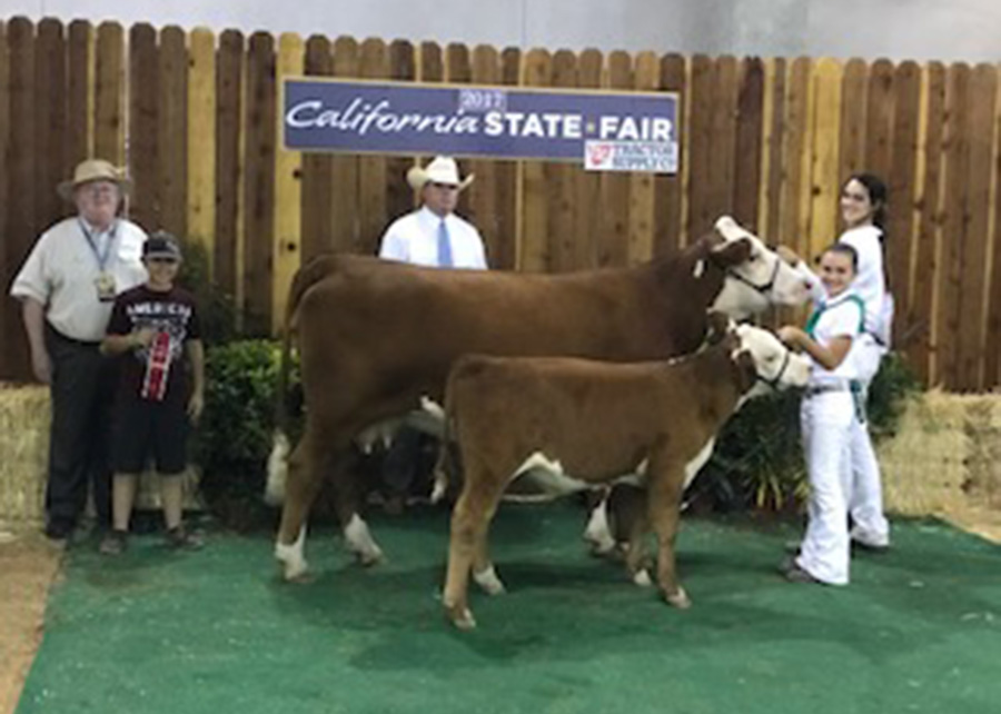 Hereford Res Champion Cow-Calf2017 California State FairShown by Kaitlin Dores