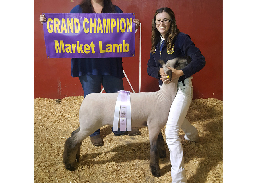 Supreme Champion2017 Del Norte County FairTaylor Jones