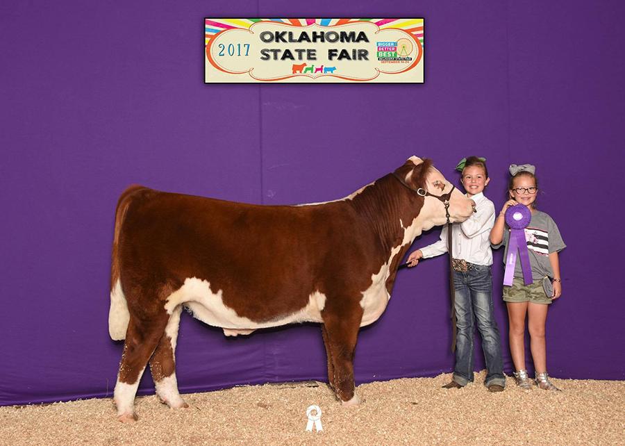 17—Breed-Champion-Hereford-Progress-Steer—OK-State-Fair