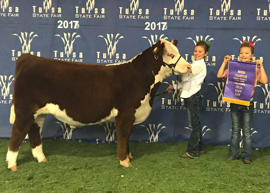 17—-Carrington-Troyer-Breed-Champion-Hereford-Prospect-Steer-Tulsa-State-Fair-Adair,ok