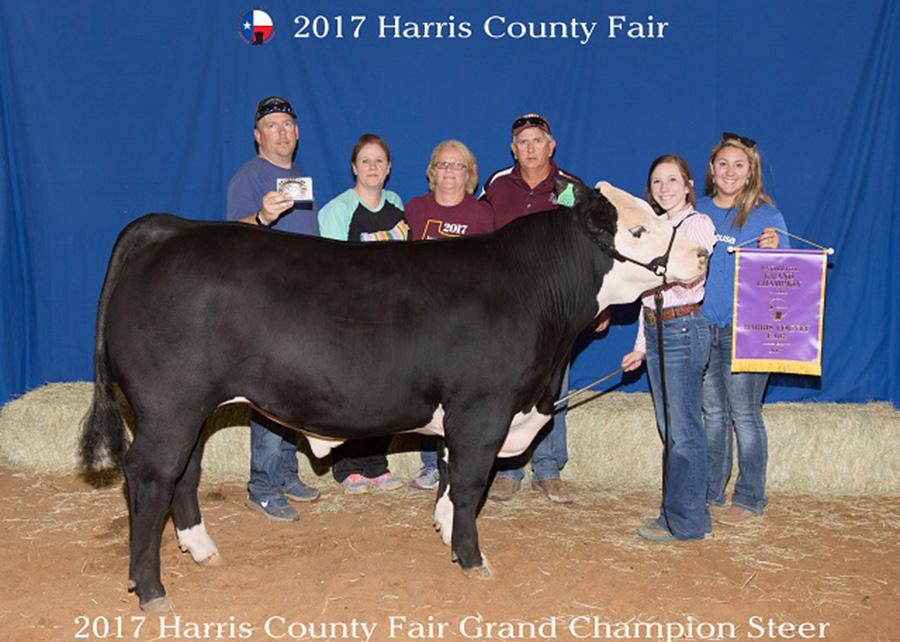 17-GC-Steer-Harris-County-Fair-Kimberly-Kinser