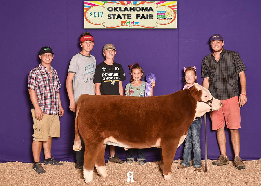 17—Grand-Champion-Mini-Hereford-Progress-Steer—OK-State-Fair