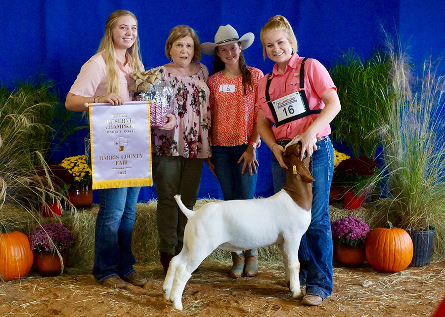 17-Res-Champ-Mkt-Goat-Harris-County-Fair-Jessie-Dykes