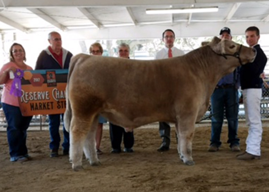 17-Res-Grand-Champ-Steer-San-Benito-Fair-Clay-Hubbell