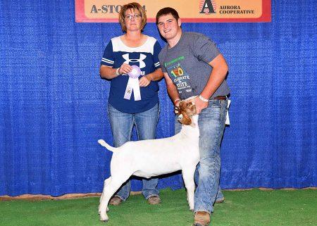 4-H Res Champion Div II Mkt Goat2017 Nebraska State FairShown by Sheldon Johnsen