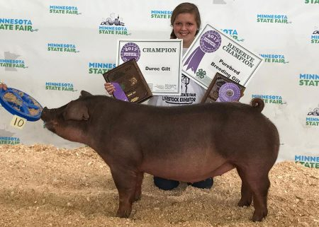 Grand Champion Duroc & Res Overall Breeding Gilt2017 Minnesota State Fair 4-H & Open ShowShown by Kaylee Steele