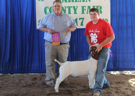 Grand Champion Mkt Goat2017 Harlan County FairShown by Sheldon Johnsen