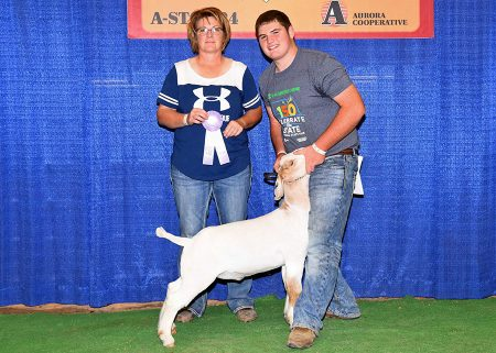 4-H Res Champion Div I Mkt Goat2017 Nebraska State FairShown by Sheldon Johnsen