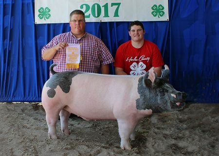 Res Champion Mkt Barrow2017 Harlan County FairShown by Sheldon Johnsen