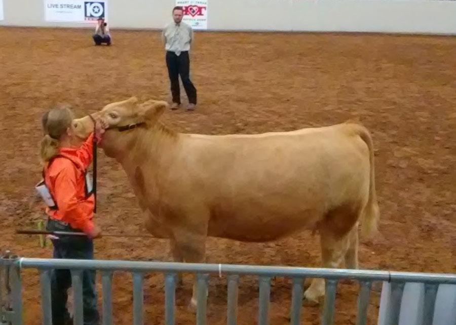 17-class-winner-Heart-of-Texas-Patrick-Goodman