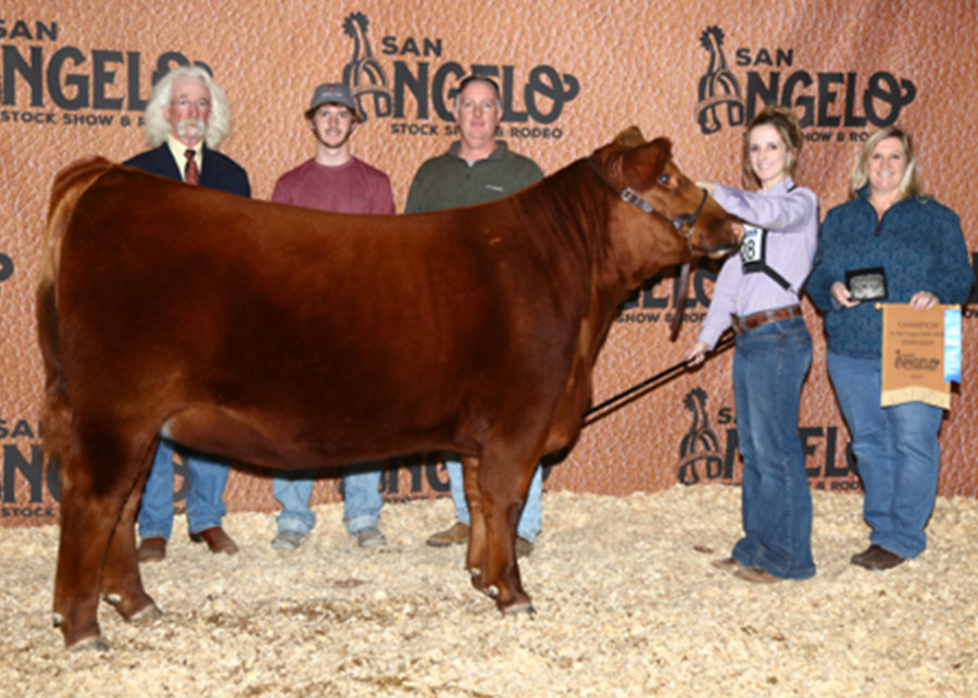 17-res-champ-red-angus-heifer-claire-shaw