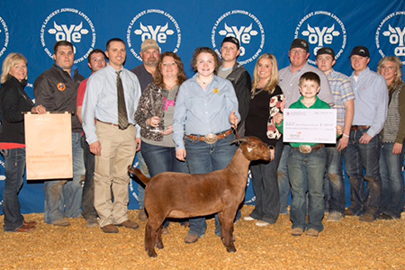 18-oye-supreme-champion-breeding-doe-kaylea-taylor