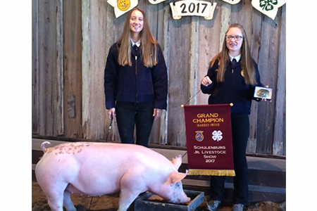 17 Schulenburg Jr Livestock Show, Grand Champ, Shown by Bailey Rolirad Test