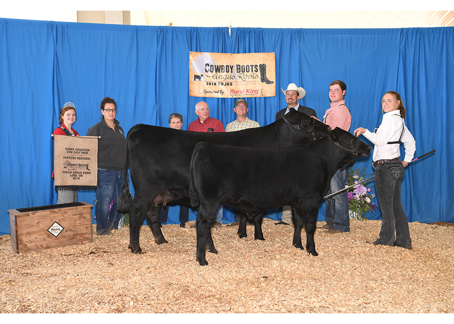 18 Eastern Regional Junior Angus Show, Grand Champion Cow-Calf Pair, Shown by Allison Davis Champ