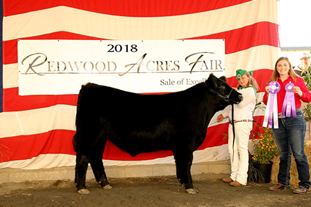 18 Redwood Acres Fair, Supreme Grand Champion, Shown by Alexa Alto Test