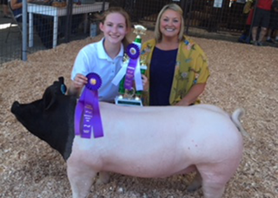 18 Washington County Fair, Grand Champion Market Hog, Shown by Diana Lewis Champ