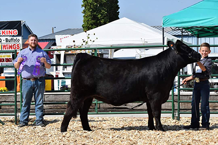 18 Lake County Fair, Grand Champion, Shown by Tate Haskins Test