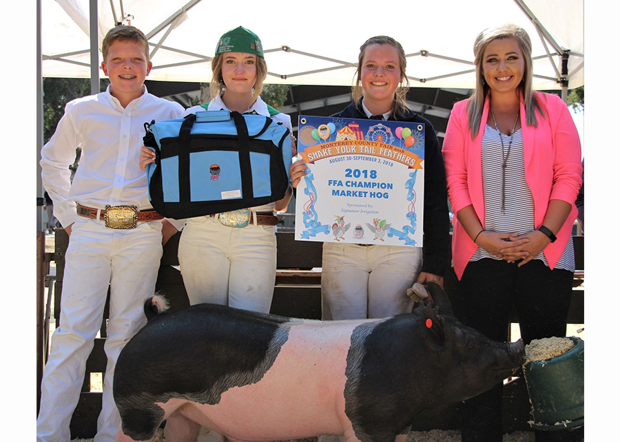 18 Monterey County Fair, Reserve Grand Champion Market Hog, Shown by Taryn Wright Champ