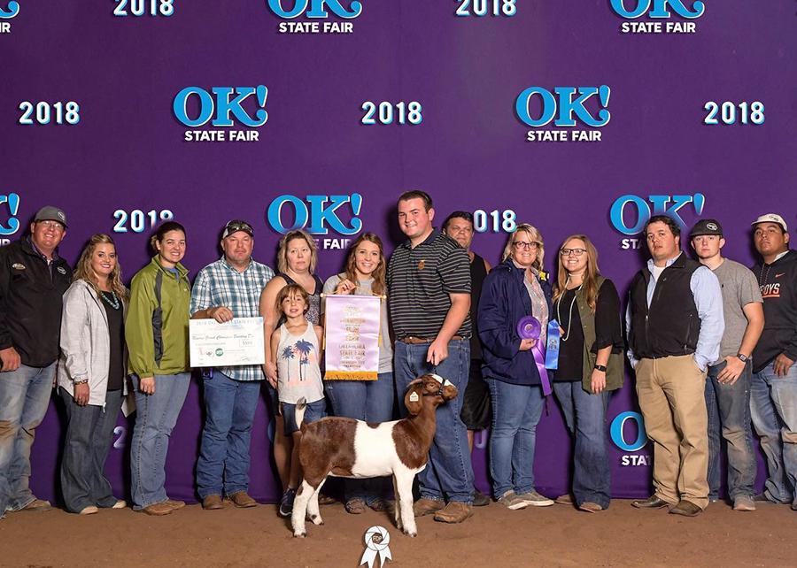 18 Oklahoma State Fair, Reserve Grand Champion, Shown by Jacob Sanderon Champ