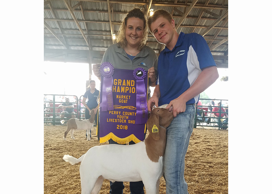 18 Perry County Fair, Grand Champion, Shown by Gage Kitner Champ
