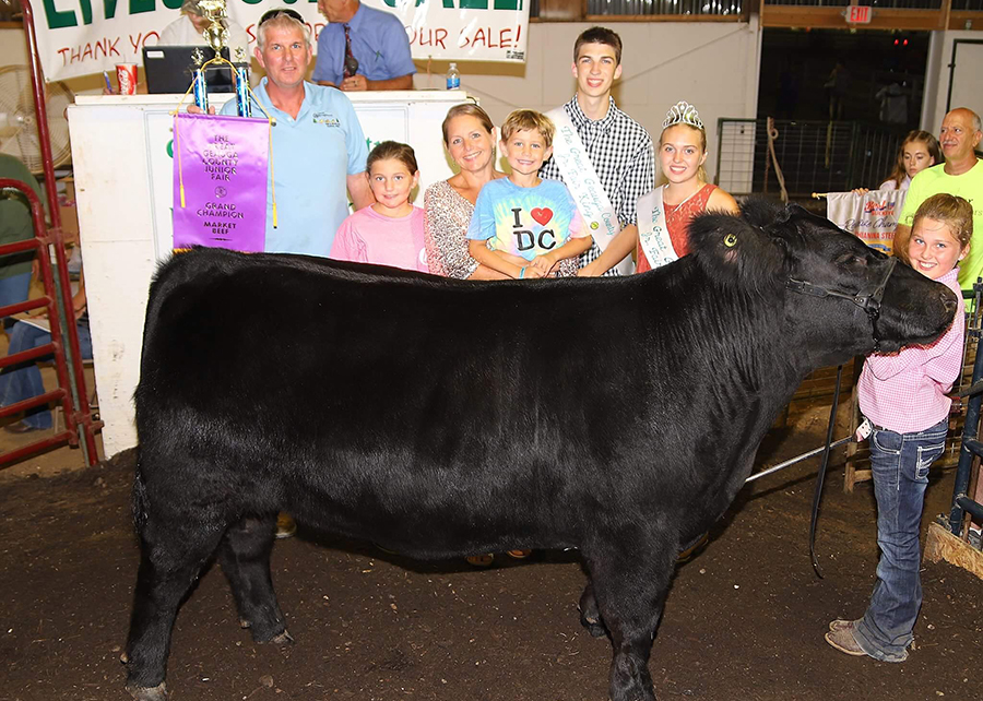 18 Geauga County Fair, Grand Champion Steer, Show by Tatumn Poff Champ
