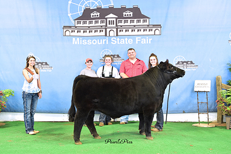 18 Missouri State Fair, FFA Reserve Champion Maintainer Steer, Show by Jillian Bryant Test