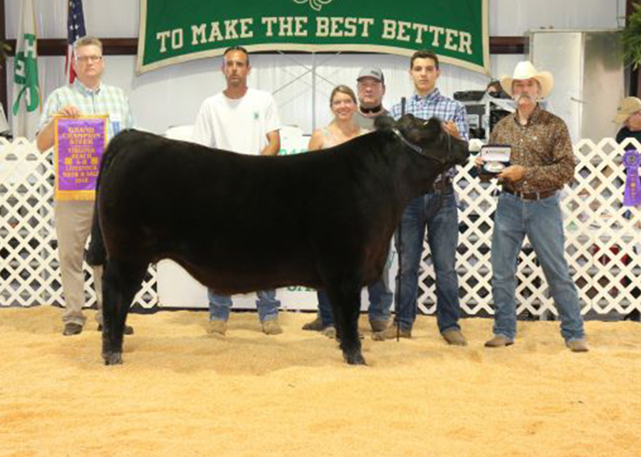 18 Virginia Beach 4-H Livestock Show & Sale, Grand Champion, Shown by Dawson Cox