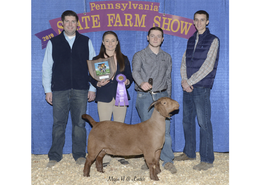 19 PA Farm Show, Grand Champion Percentage Doe, Shown by Garrett Jenkins Champ