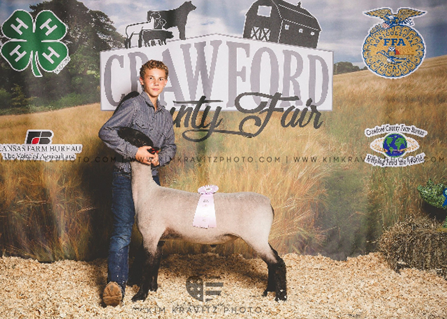 18 Crawford County Kansas Fair, Reseve Grand Champion, Shown by Ethan Merrell champion