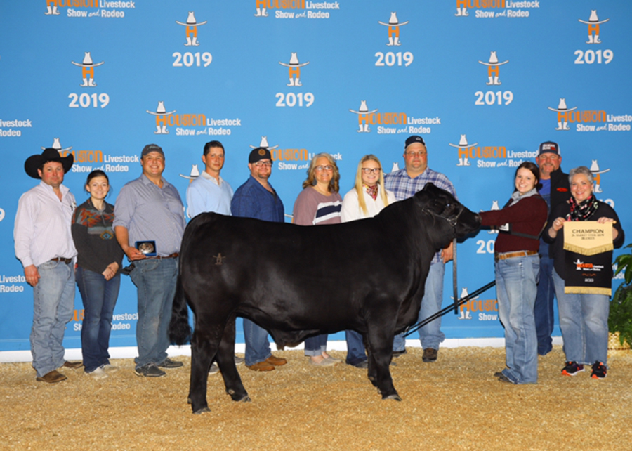 19 Houston Livestock Show & Rodeo, Breed Grand Champion Brangus Steer, Shown by Whitney Mahan champ