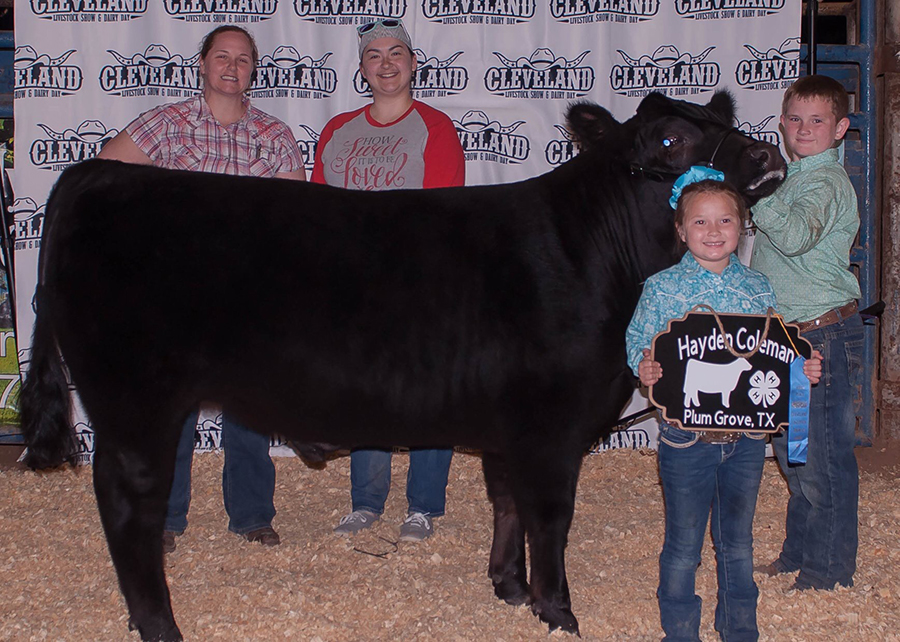 18 Cleveland Livestock Show and Dairy Day, 3rd overall, Shown by Hayden Coleman Champ