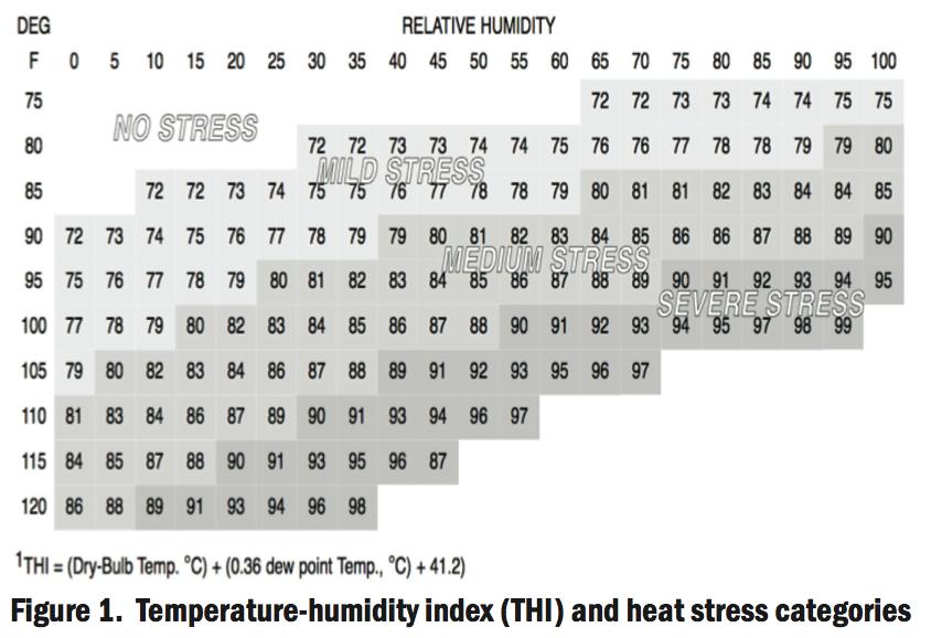 Heat Stress in Cattle