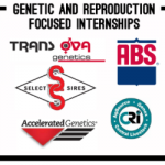 Reproduction Service Internships