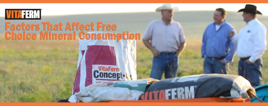 Factors that Affect Mineral Consumption